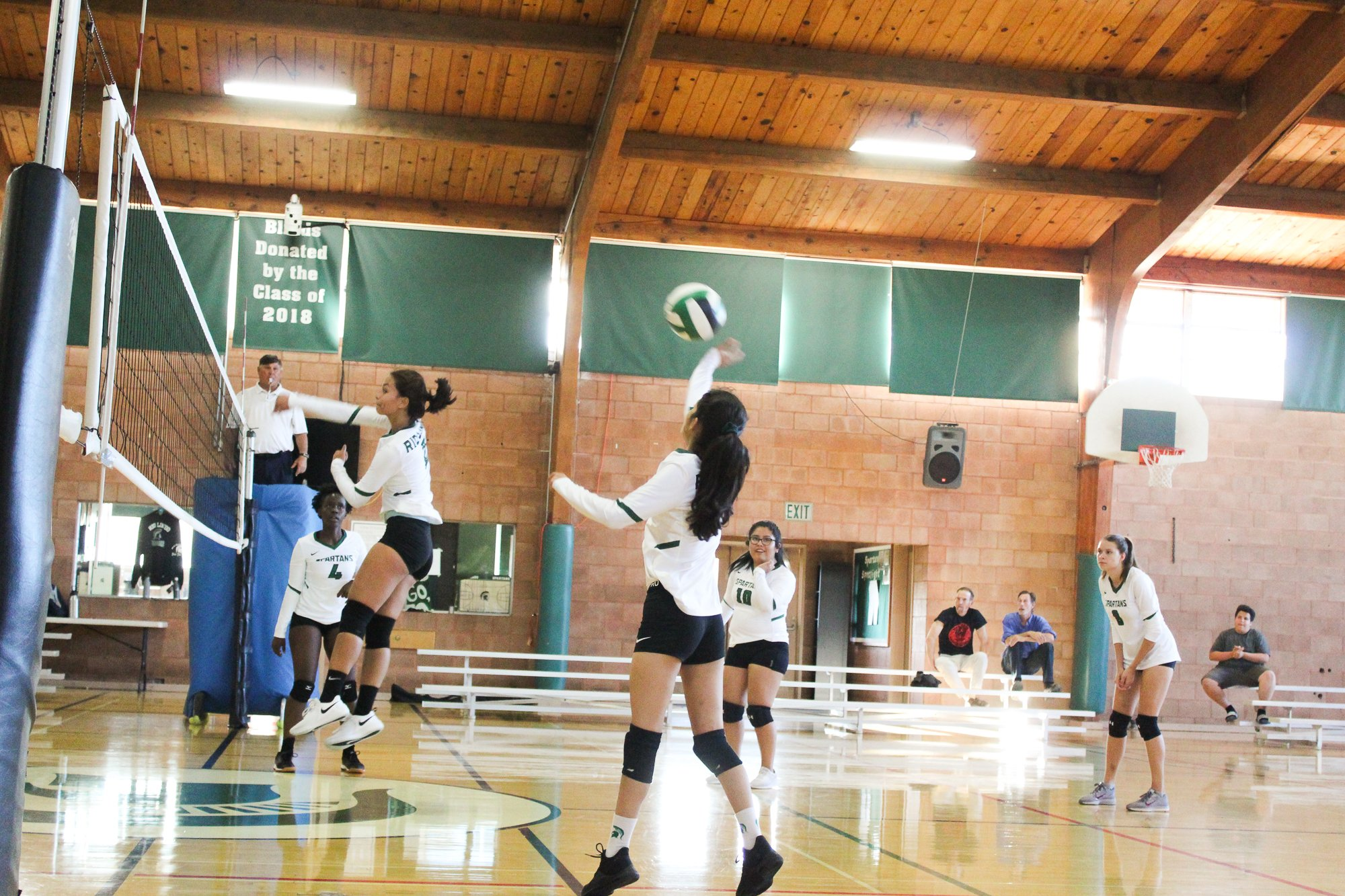 spiking the volleyball